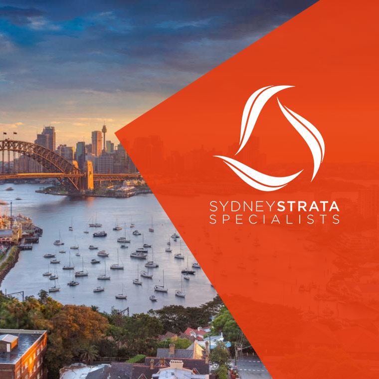 Small-business-specialists-Brisbane-the-peddlers